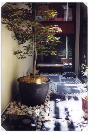 Contemporary Light Well Small Spaces Garden Design