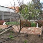 Back Garden level 1