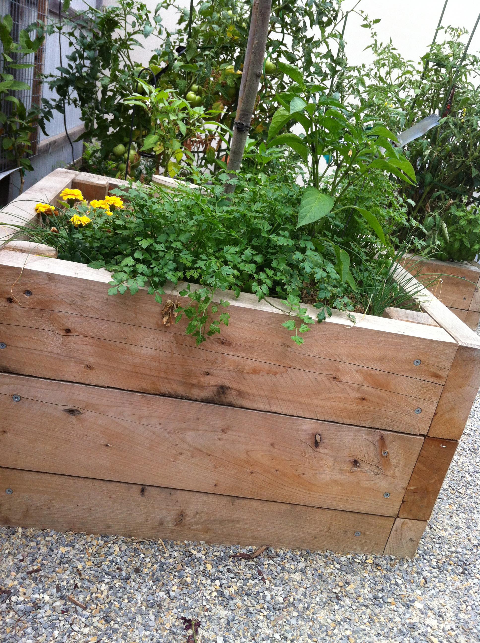 Vegetable gardens in small spaces - Small Spaces Garden Design
