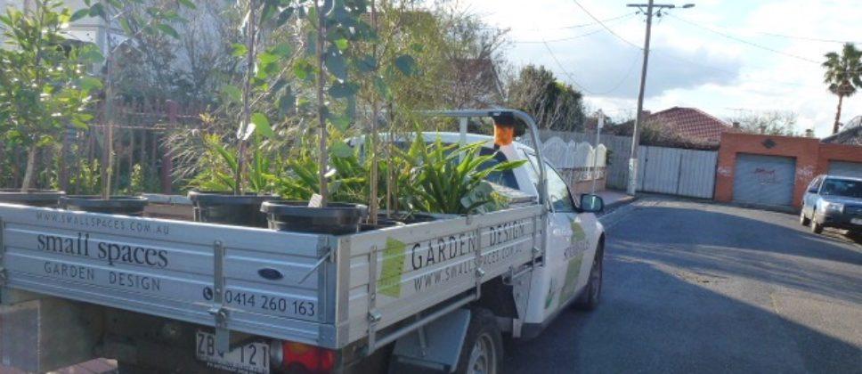 Plantsloaded - 1