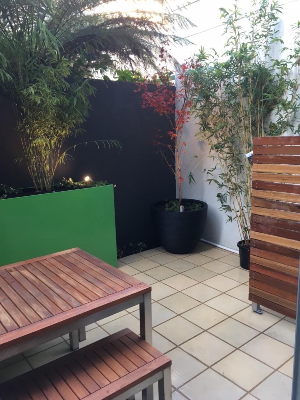 new courtyard in Melbourne - Small Spaces Garden Design