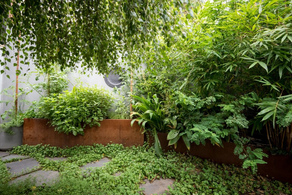 Garden renovation with Small Spaces in Melbourne